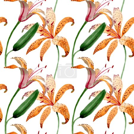 Photo for Orange lilium maculantum floral botanical flowers. Watercolor background illustration set. Watercolour drawing fashion aquarelle. Seamless background pattern. Fabric wallpaper print texture. - Royalty Free Image