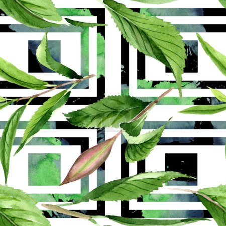 Photo for Green tea leaves. Leaf plant botanical garden floral foliage. Watercolor illustration set. Watercolour drawing fashion aquarelle isolated. Seamless background pattern. Fabric wallpaper print texture. - Royalty Free Image