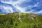 """Постер, картина, фотообои """"Солнечный день вид на горы Татра на границе Польши и Словакии"""""""