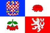 Flag of Vysocina Region in Czech Republic