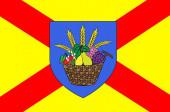 Flag of Bobigny in Seine-Saint-Denis France