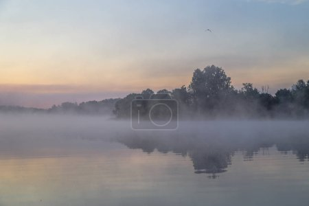 Photo for Landscape of river and forest with fog at sunset - Royalty Free Image