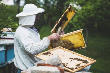 Photo pour Plan rapproché du cadre de la main de l'homme avec de la cire d'abeille. Concentration sélective. - image libre de droit