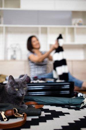Photo pour Jeune femme touriste emballant ses affaires chaudes d'hiver et d'automne dans une grande valise. Son beau chat bleu russe couché devant. Concept de préparation au voyage. - image libre de droit