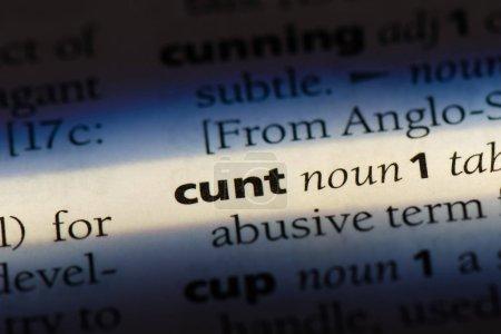 Photo pour Parole de chatte dans un dictionnaire. concept de chatte - image libre de droit