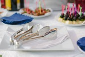 catering service equipment - metal tongs on white plate.
