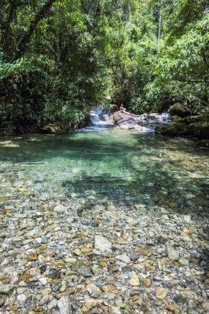 Beautiful crystal clear water river, Serrinha do Alambari Ecological Reserve in the Atlantic Rainforest of Serra da Mantiqueira, Rio de Janeiro, Brazil
