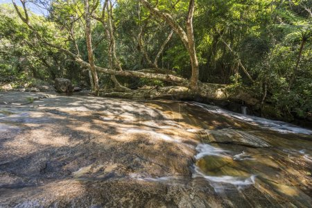 Young woman laying on tree in Rio Grande Waterfall in the tropical rainforest, Saco do Mamangua, Paraty, Costa Verde region in south Rio de Janeiro, Brazil