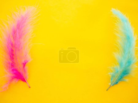 Photo for Pink and green feathers on a yellow background - Royalty Free Image