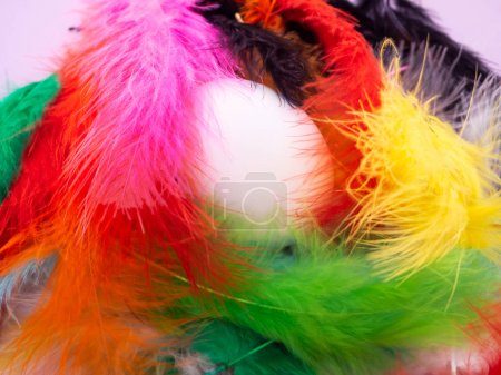 Photo for An egg among many feathers dyed in various colors - Royalty Free Image