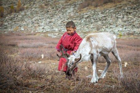 Photo pour Tsaatan enfant dans le paysage nord de la Mongolie avec un bébé renne - image libre de droit