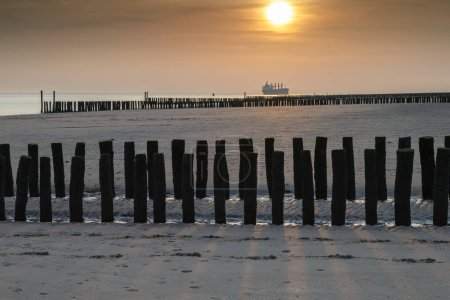 Wooden poles in sea and a beautiful sunset at the Dutch coast.