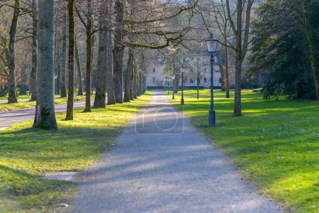 Photo for Receding view of an empty path in a park alongside a tree-lined avenue and green lawns - Royalty Free Image