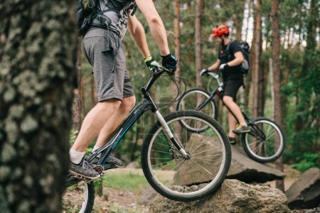 cropped shot of young trial bikers having fun in pine forest