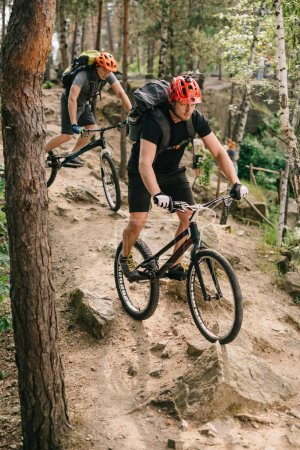 extreme young trial bikers riding downhill on back wheels at beautiful forest