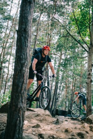 athletic young trial bikers riding at beautiful pine forest