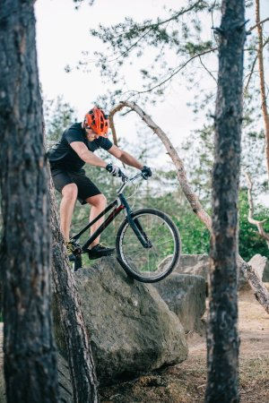 extreme young trial biker climbing on rock at pine forest