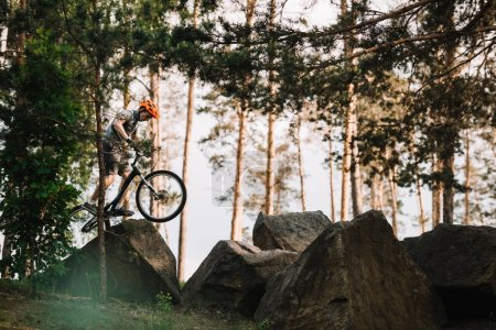 side view of trial biker balancing on rocks outdoors at pine forest