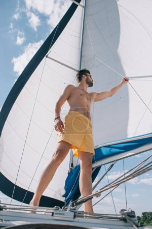 low angle view of shirtless muscular man in swim trunks adjusting sail on yacht
