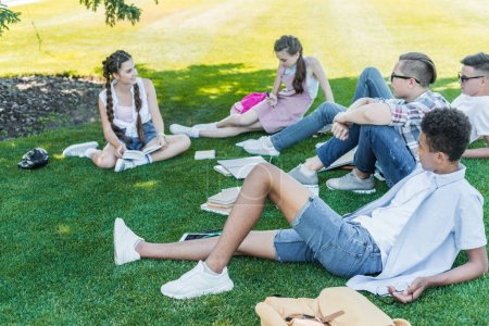 multiethnic teenage students sitting on grass, talking and studying in park