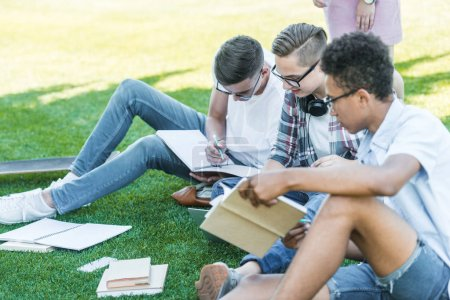 multiethnic teenage boys sitting and studying together in park