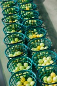 close up view of golf balls in buckets at golf course