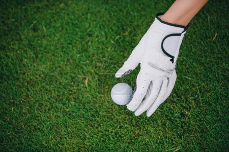 partial view of woman in golf glove putting ball on green lawn at golf course