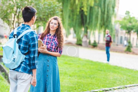 partial view of multiracial students having conversation in park