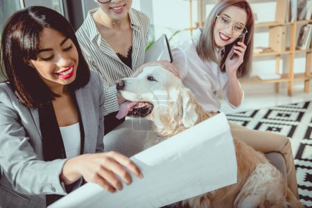 young multiethnic businesswomen in formal wear fooling around with dog at office