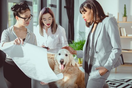 young multiethnic businesswomen in formal wear showing blueprint to dog at office