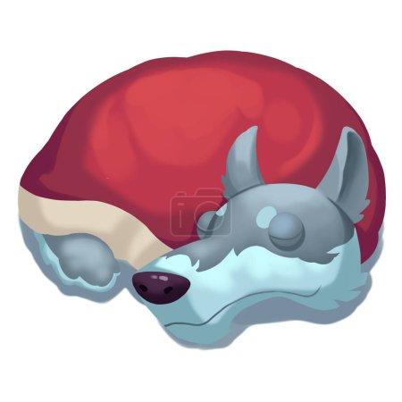 Photo pour Vue rapprochée de loup endormi illustration - image libre de droit