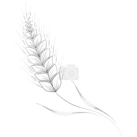 Photo pour Vue rapprochée de l'illustration de la plante de blé - image libre de droit