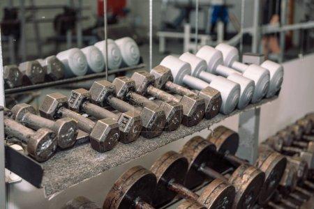 Gym equipment. Weights, dumbbells. Gym. Weightlift...