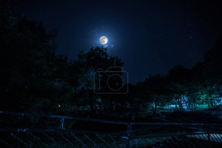 Photo for Mountain Road through the forest on a full moon night. Scenic night landscape of dark blue sky with moon - Royalty Free Image