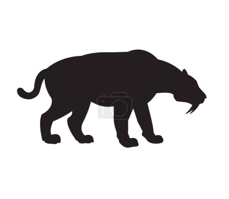 Illustration for Vector black flat silhouette of saber-toothed tiger isolated on white background - Royalty Free Image
