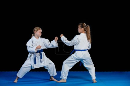 Karate martial Arts Two little girls demonstrate martial arts working together.